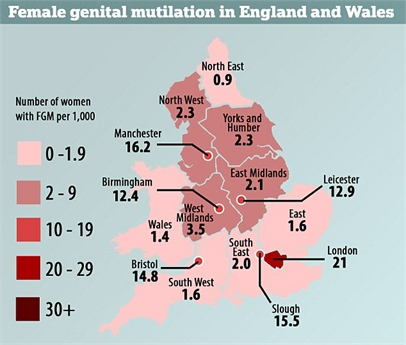 FGM Cases in the UK